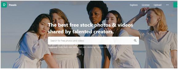 pexel free image websites